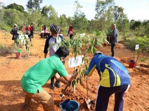 Asyiknya Berolahraga dan Menanam Pohon Bersama BP Batam-04